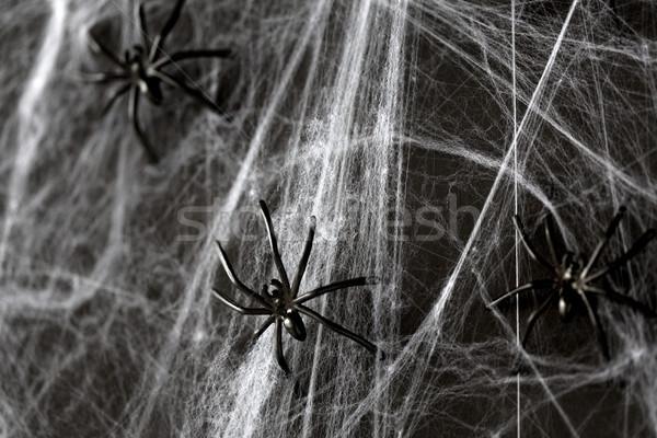 Halloween dekoráció fekete játék pókok háló Stock fotó © dolgachov