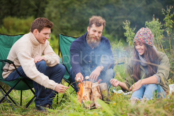 Grup gülen arkadaşlar oturma etrafında şenlik ateşi Stok fotoğraf © dolgachov