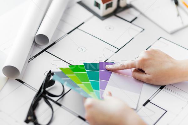Mani colore palette blueprint business Foto d'archivio © dolgachov