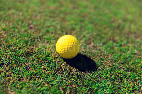 close up of yellow golf ball on green grass Stock photo © dolgachov