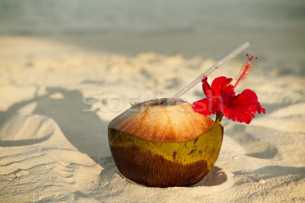 Kokosnoot drinken exotisch tropische Maldiven strand Stockfoto © dolgachov
