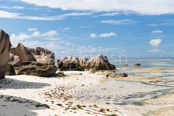 Rotsen Seychellen eiland strand indian oceaan Stockfoto © dolgachov