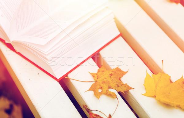 Livro aberto parque banco temporada educação Foto stock © dolgachov