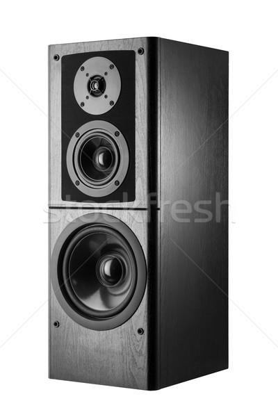 Lautsprecher schwarz Audio Stereo Ausrüstung Technologie Stock foto © donatas1205