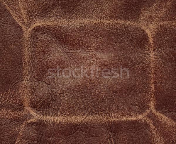 Foto stock: Marrom · couro · moda · fundo · tecido