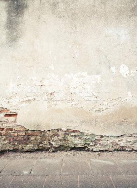 Wall texture Stock photo © donatas1205