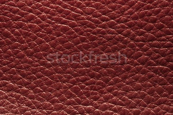 red leather Stock photo © donatas1205