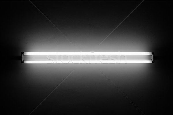 Fluorescent light Stock photo © donatas1205