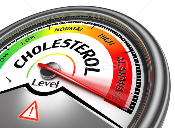 cholesterol level conceptual meter Stock photo © donskarpo