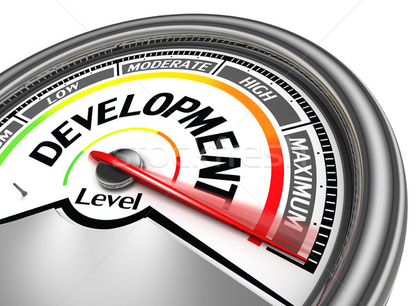 development conceptual meter Stock photo © donskarpo