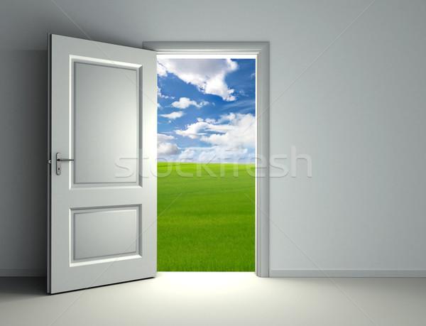 Beyaz kapıyı açmak içinde boş oda görmek yeşil Stok fotoğraf © donskarpo