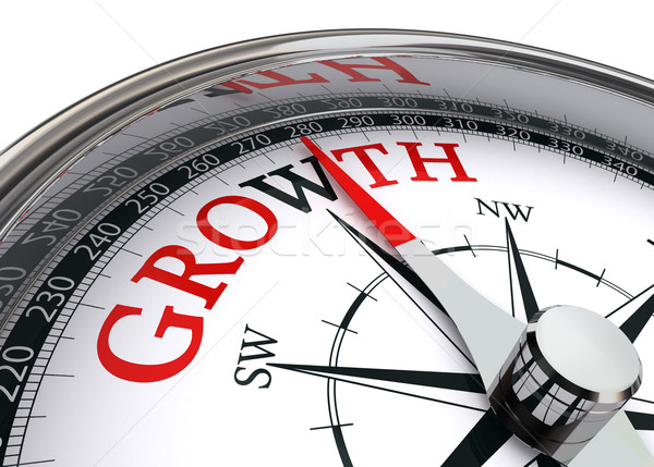 growth concept compass Stock photo © donskarpo