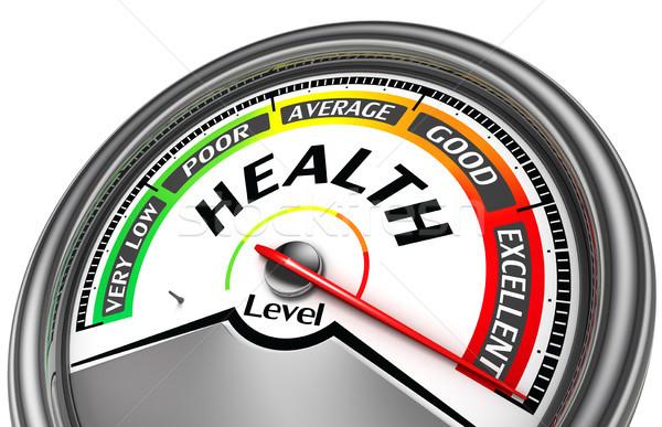 health level conceptual meter Stock photo © donskarpo