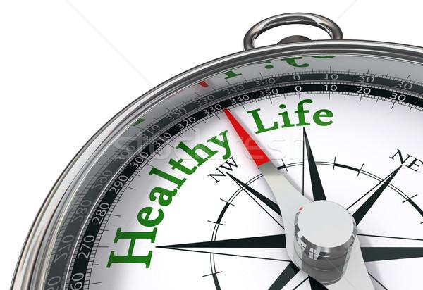 Egészséges élet iránytű fehér üzlet fitnessz háttér Stock fotó © donskarpo