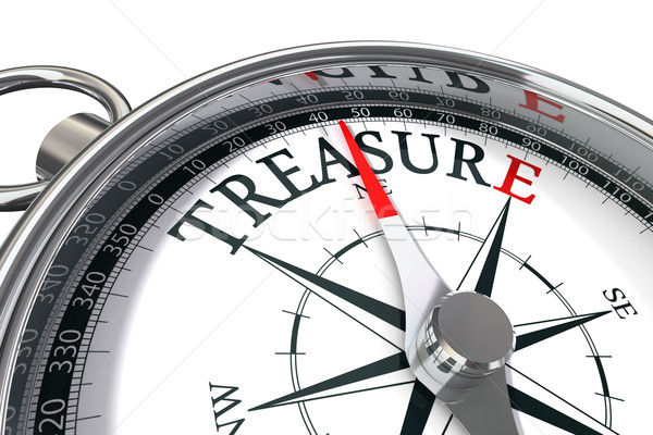 discover the treasure conceptual image Stock photo © donskarpo