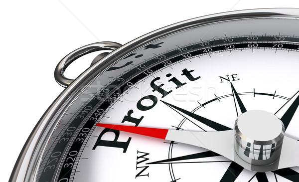 Stock photo: profit concept compass