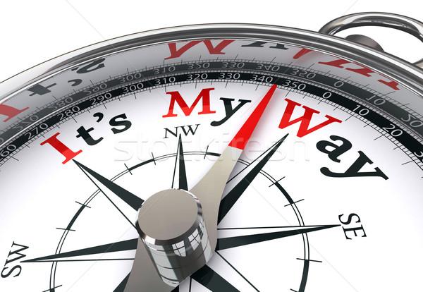 Mijn manier kompas Rood woord afbeelding Stockfoto © donskarpo