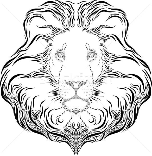Lion Head Icon Stock photo © Donvanstaden