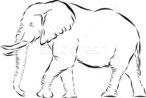 Elefánt ikon vektor vonal művészet illusztráció Stock fotó © Donvanstaden