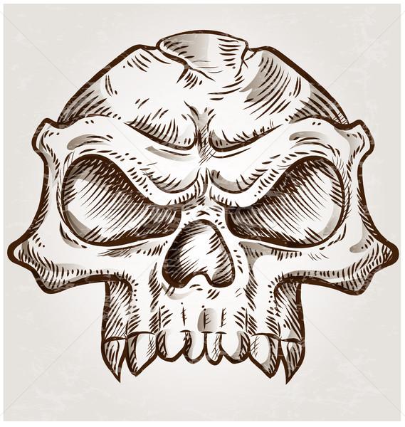 Kafatası kroki dizayn doku yüz vücut Stok fotoğraf © doomko