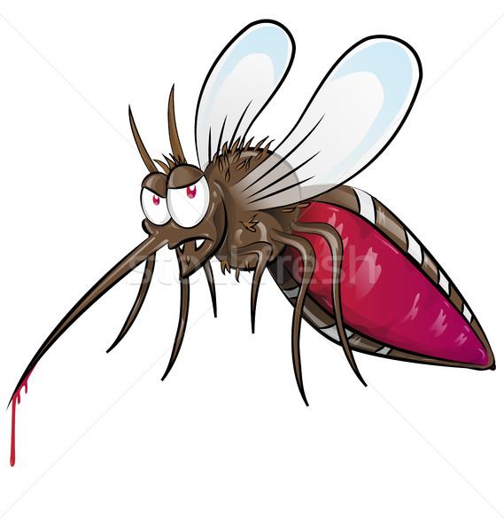mosquito  cartoon isolated on white background Stock photo © doomko