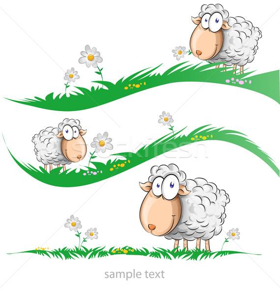 Ovelha desenho animado conjunto prado isolado páscoa Foto stock © doomko