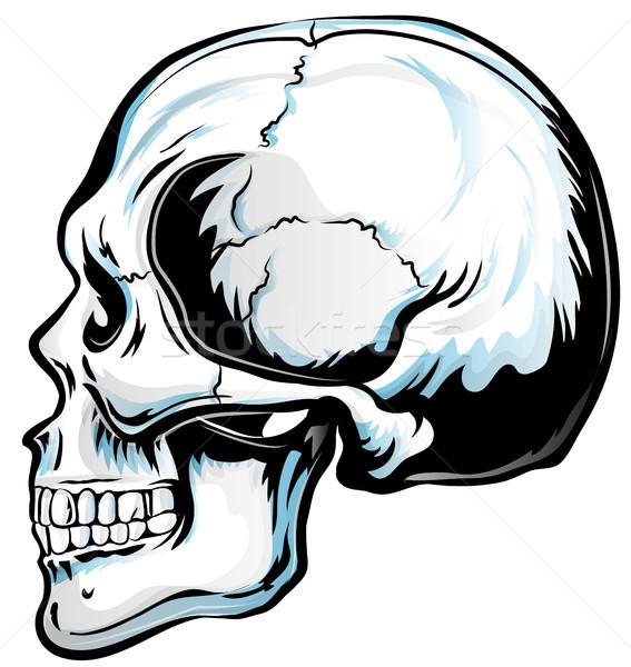 頭蓋骨 ベクトル 芸術 詳しい 実例 グランジ ストックフォト © doomko