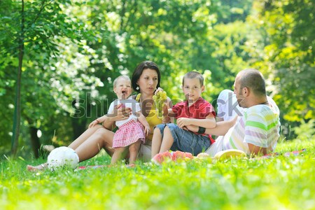 happy young couple with their children have fun at park Stock photo © dotshock