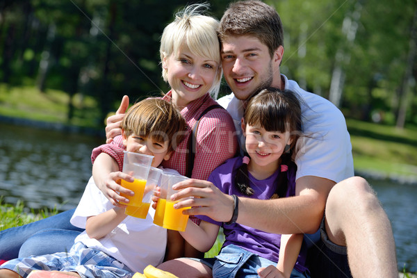 Happy family playing together in a picnic outdoors Stock photo © dotshock