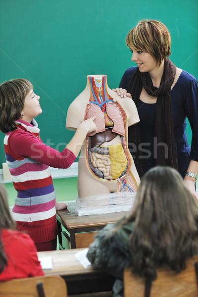 happy school girl on math classes Stock photo © dotshock