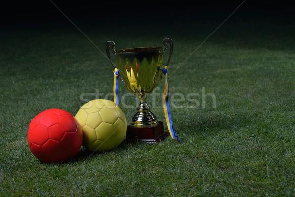 soccer cup Stock photo © dotshock