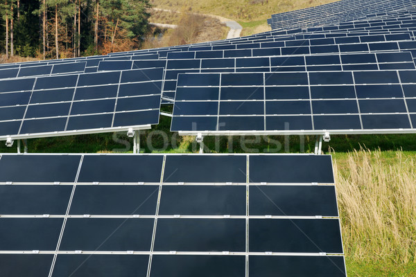 solar panel renewable energy field Stock photo © dotshock