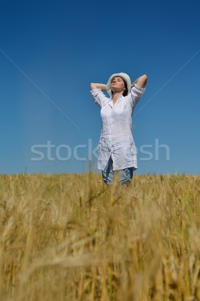 young woman in wheat field at summer Stock photo © dotshock