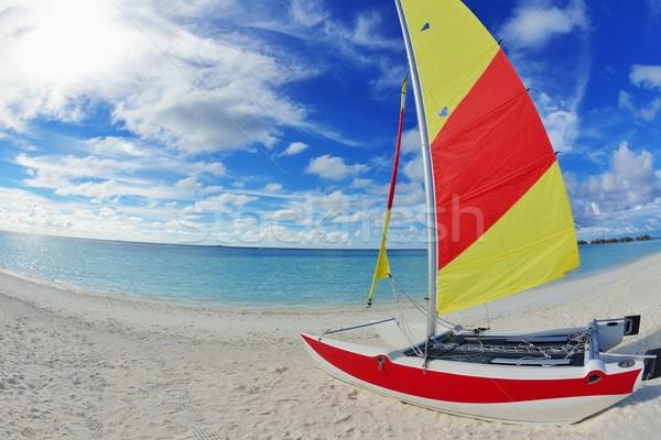 тропический пляж лет солнце аннотация природы Сток-фото © dotshock
