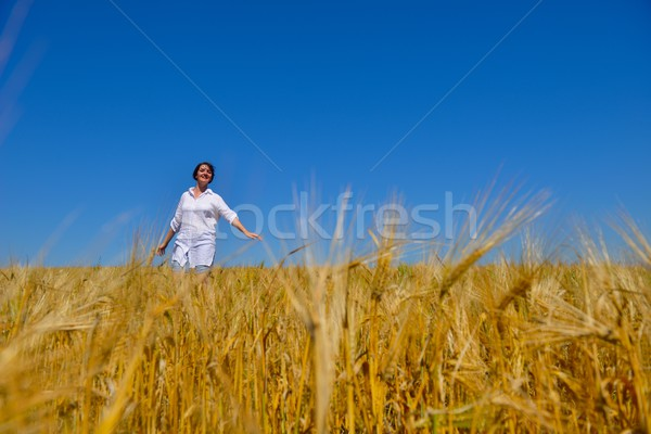 Fiatal nő búzamező nyár áll ugrik fut Stock fotó © dotshock