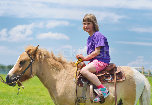 Enfant poney heureux brun ciel bleu Photo stock © dotshock