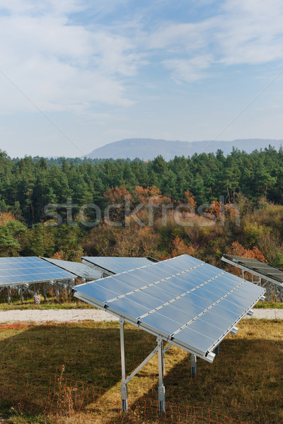 Zonnepaneel hernieuwbare energie veld hernieuwbare eco energie Stockfoto © dotshock