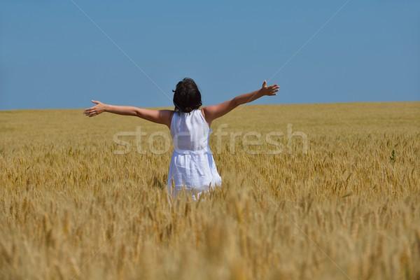 Młoda kobieta pole pszenicy lata stałego skoki uruchomiony Zdjęcia stock © dotshock