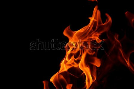 fire flame on black background Stock photo © dotshock