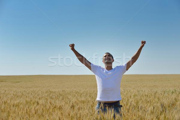 Férfi búzamező fiatalember siker mezőgazdaság szabadság Stock fotó © dotshock