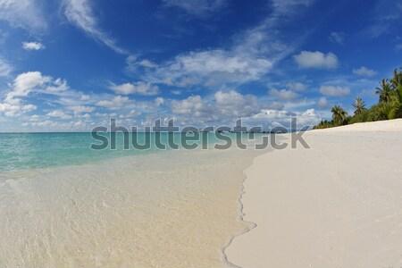 tropical beach Stock photo © dotshock