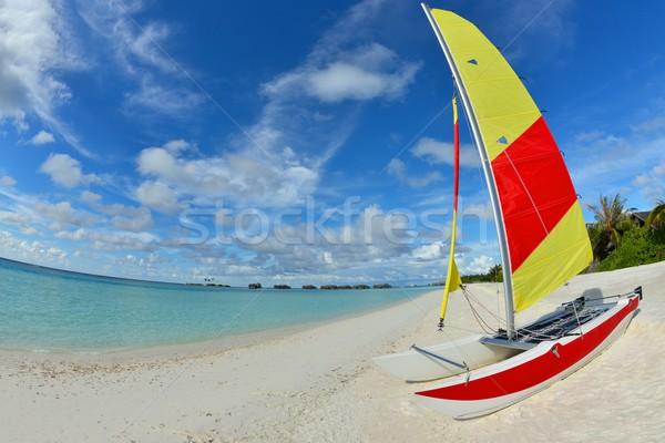 Praia tropical areia branca verão abstrato natureza fundo Foto stock © dotshock