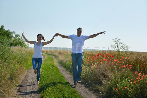 Felice Coppia campo di grano amore romance Foto d'archivio © dotshock