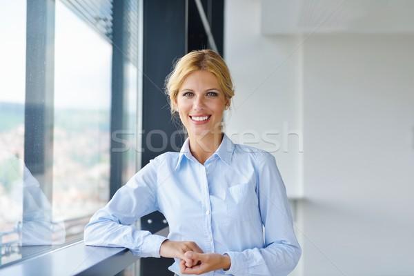 Stockfoto: Jonge · mooie · zakenvrouw · notebook · kantoor · heldere