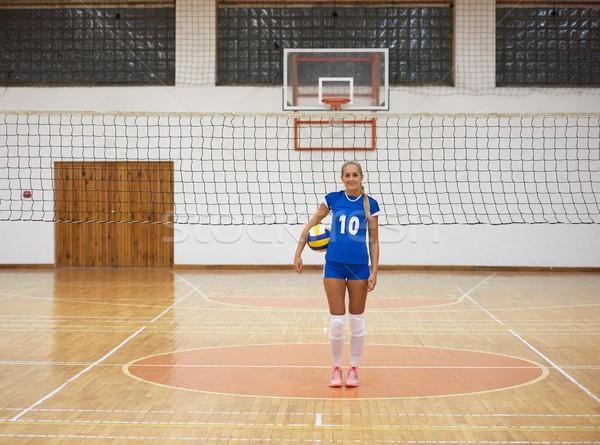 Siatkówka gry sportu grupy młodych piękna Zdjęcia stock © dotshock