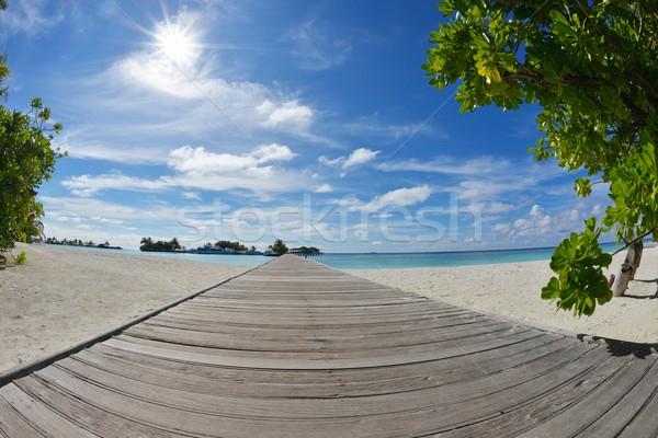 тропический пляж природы пейзаж лет аннотация Сток-фото © dotshock