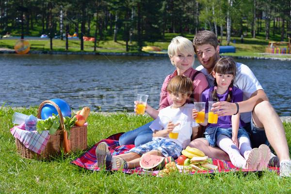 счастливая семья играет вместе пикника улице счастливым Сток-фото © dotshock