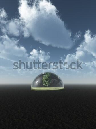 Bescherming boom glas koepel 3d illustration hemel Stockfoto © drizzd