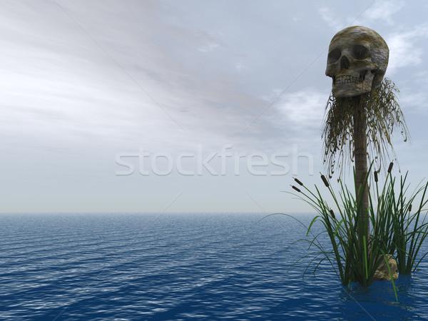 skull Stock photo © drizzd