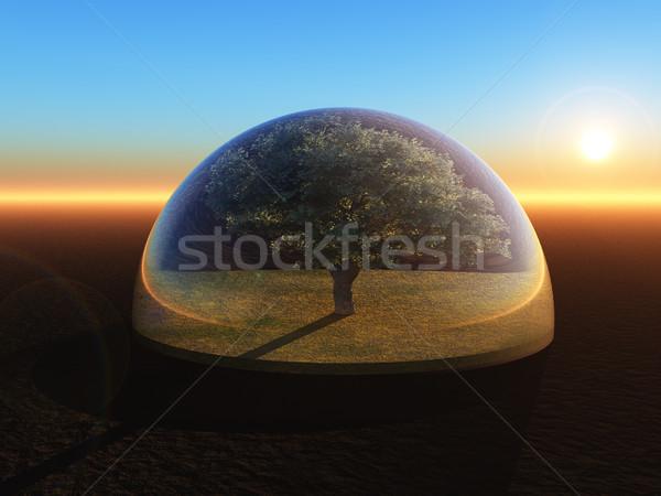 дерево стекла купол 3d иллюстрации небе лист Сток-фото © drizzd